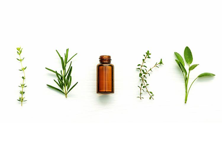 fabricación aceites ungüentos naturales eco bio