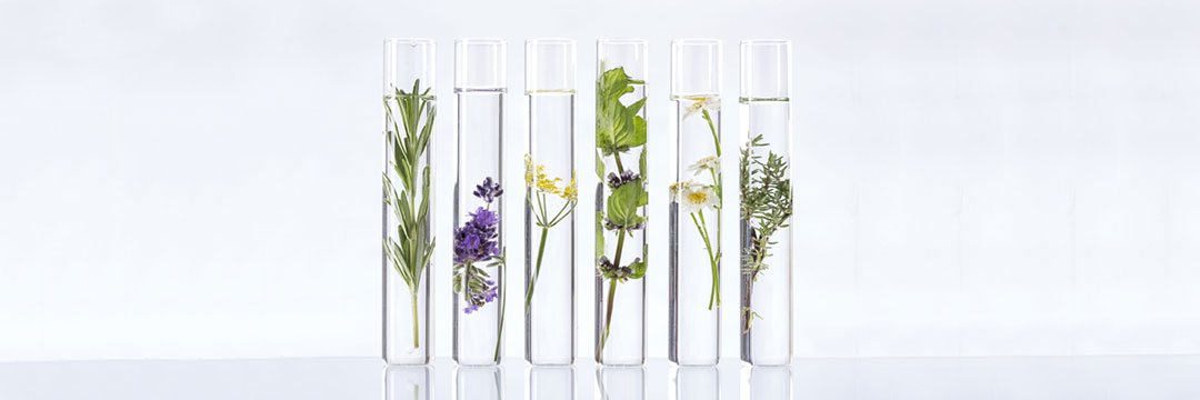 materias primas natural cosmetic lab certificada orgánica